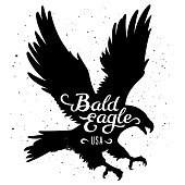 Bald Eagle silhouette and handwritten inscription 'Bald Eagle USA'. Vector illustration in hipster style. T-shirt graphics
