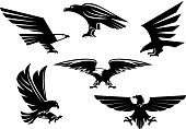 Bird icons set. Vector heraldic eagle or hawk isolated emblem. Gothic or imperial predatory falcon symbol with open spread wings and sharp clutches. Eagle or griffin heraldry sign for sport team masco