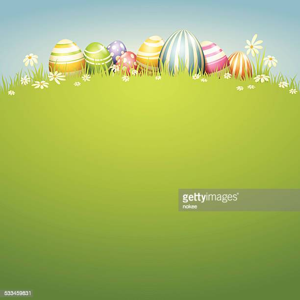 Easter Egg - Spring Field