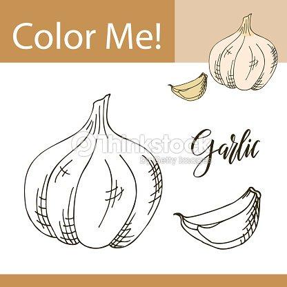 Ajo Para Colorear. dibujo de unos ajos para colorear dibujos net ...