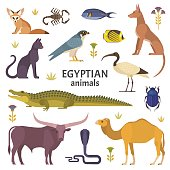 Vector illustration of African animals, such as camel, crocodile, buffalo, ibis, cat, Egyptian dog, and scorpio isolated on white.