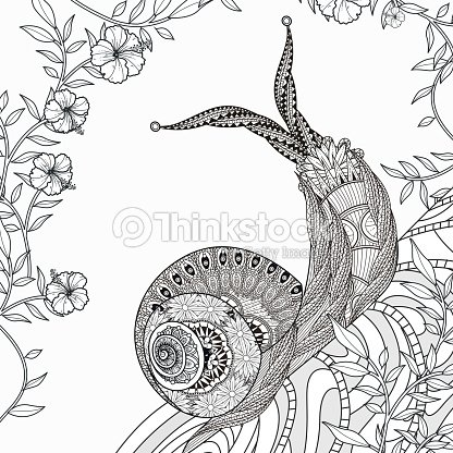 Elegant Snail Coloring Page Vector Art | Thinkstock
