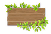 Empty wooden sign with space for text on a background of tree branches with green leaves. The template for a banner or an advertisement for a seasonal discount.