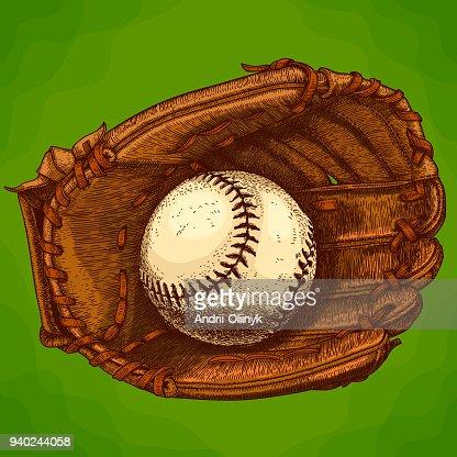 engraving  illustration of baseball glove and ball : stock vector