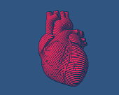 Engraving red human heart with flow line art stroke isolated on blue BG
