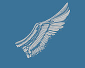 Wing engraving drawing in gray color illustration  isolated on dark blue background