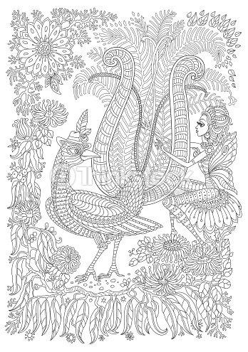 Exotische Vögel Fantastischen Tropischen Blumen Zweig Laub Kontur