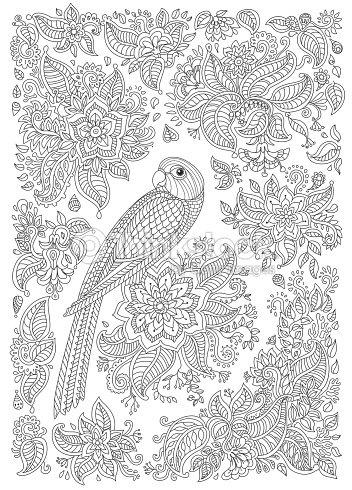 Exotischer Vogel Mit Phantastischen Blumen Zweige Blätter Black And