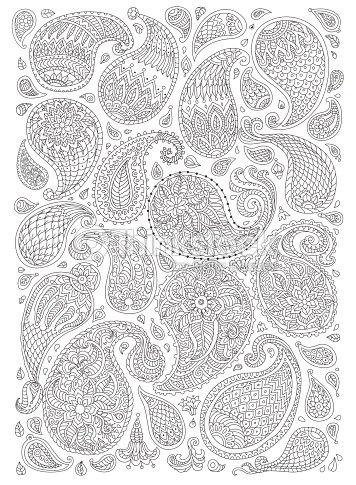 Elementos Decorativos Exóticos De Paisley Con Fantásticas Flores ...