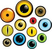 Collection of human and animal eyes. Download contains EPS8, AI10, SVG and JPG