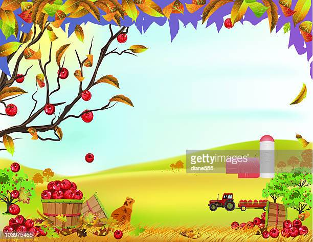 Orchard Stock Illustrations And Cartoons | Getty Images