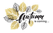 Fall background design with golden and black autumn leaves. Vector illustration EPS10