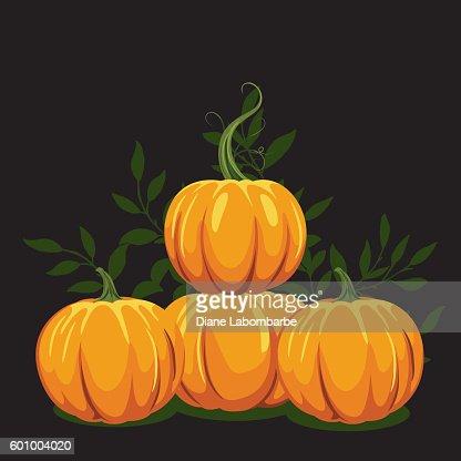 Pumpkin vine drawing