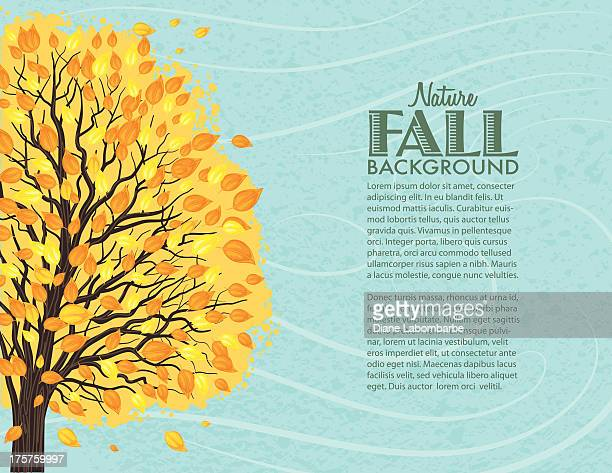 Fall Tree Background. Windy Day