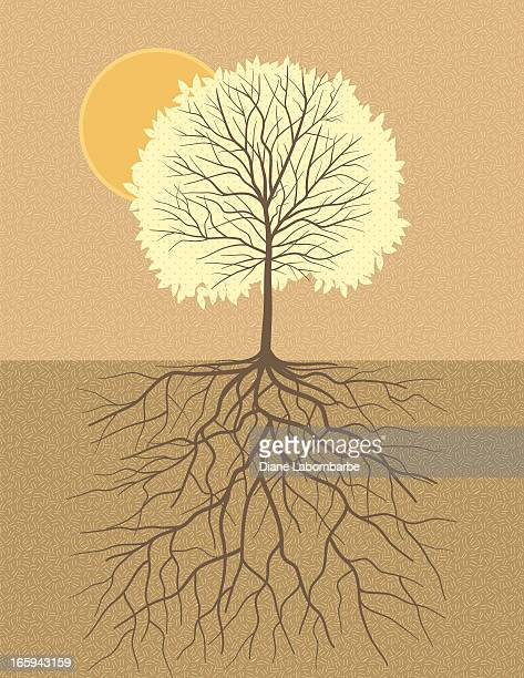 Fall tree with root illustration show strong roots