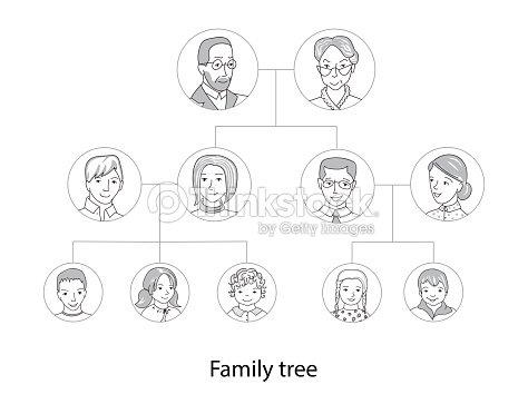 family tree chart thin line style vector ベクトルアート thinkstock