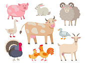 Farm animals vector flat collection isolated on white background. Set of animals includes cow, pig, goat, sheep, turkey, rabbit, duck, hen, rooster and goose in cartoon design