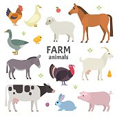 Vector collection of farm animals and birds in trendy flat style, including horse, cow, donkey, sheep, goat, pig, rabbit, duck, goose, turkey and chicken, isolated on white.