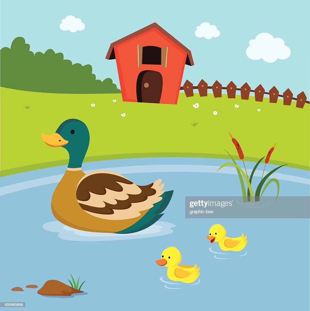 Farm. Mother duck and the ducklings swimming in the pond. : Vector Art