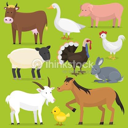 Farm vector animals, birds farmland set illustration. Horse, pig, cow