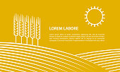 Farmer field and ears of wheat. Linear illustration for banner on a yellow background.