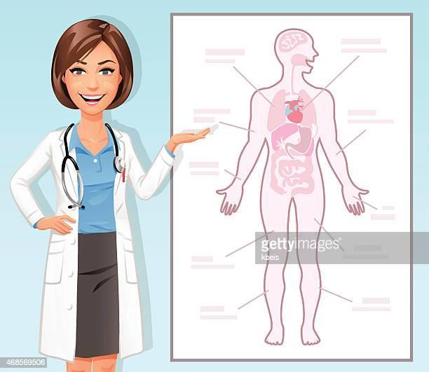 Weiblich Arzt erklären den menschlichen Körper
