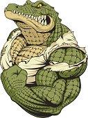 Vector illustration, a ferocious alligator bodybuilder athlete posing, showing large biceps