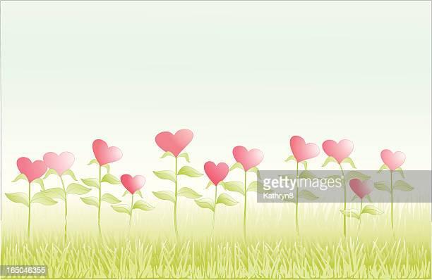 Field of Hearts