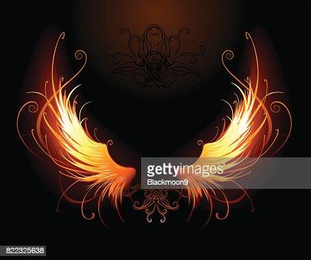 fiery wings : stock vector