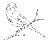 Check out this continuous vector line in the form of a finch sitting on a branch