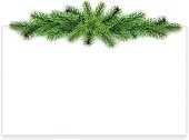 Realistic vector fir branches for decorating christmas card. Placed horizontally on top of sheet.