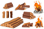 Firewood and campfire vector cartoon flat icon set.