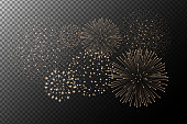 Fireworks isolated on transparent background. Independence day concept. Festive and holidays background. Vector illustration