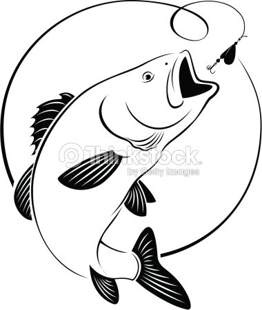 Color bluecatfish together with Chinese Catfish 141684838 together with 4 likewise Channel Catfish Coloring Page further 180162522. on flathead catfish drawings