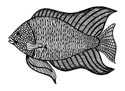 Pescado Doodle Estilo Colorear Libro Para Adultos Y Niños Antiestrés ...