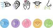 hand drawn icon set of the five senses