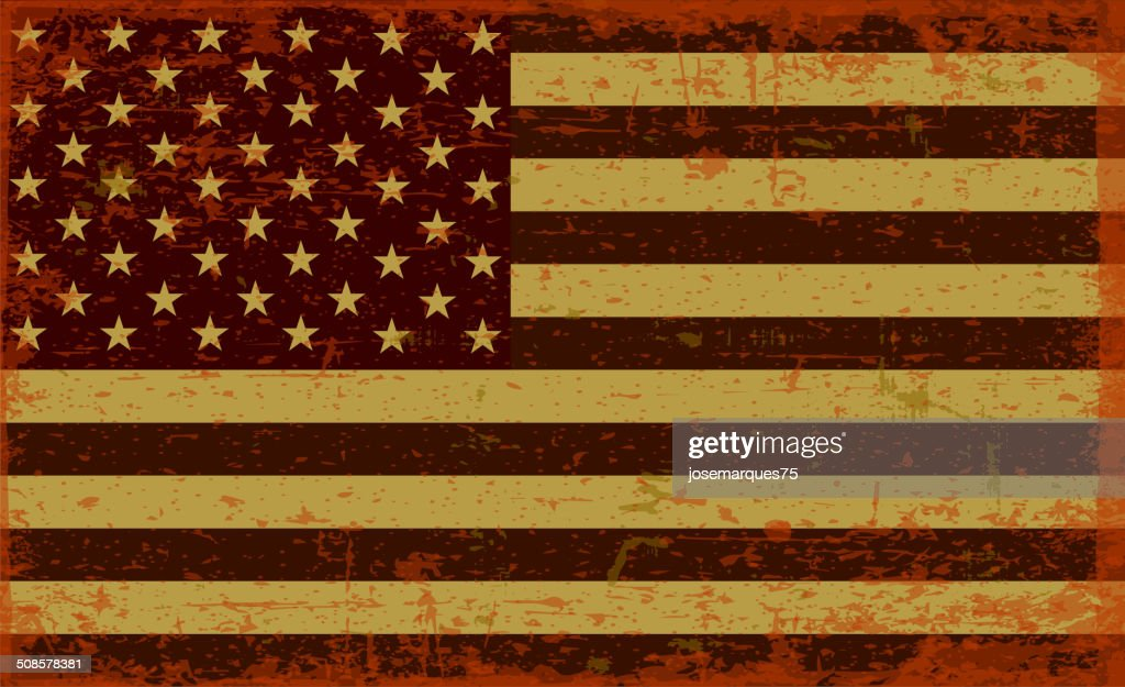 Flag of the USA : Vector Art