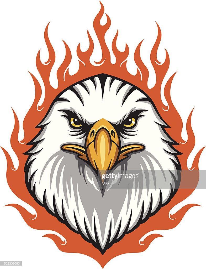 flaming eagle head vector art getty images