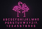 Flamingo neon sign. Pink 80s font. Tropical flamingos electric glow bar billboard logo with fluorescent purple light bulb letters text and numbers symbols vintage decoration vector illustration
