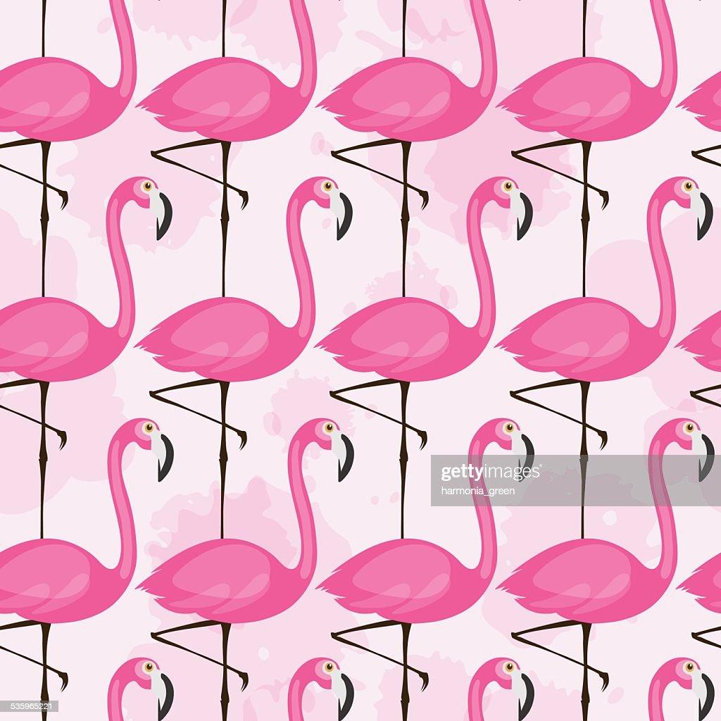 flamingo pattern : Vector Art