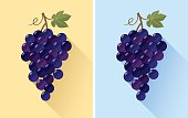Flat design of grape bunch. Vector illustration