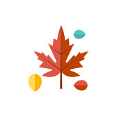 Maple leaf icon in flat color style. Autumn fall Canada