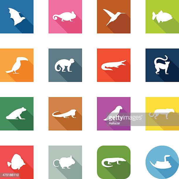 Flat Icons - Exotic Animals