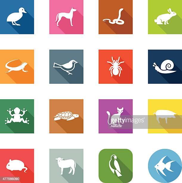 Flat Icons - Pets