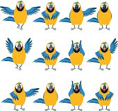 Vector image of the Flat set of Macaw icons