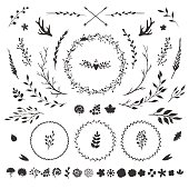 vector set with rustic floral elements isolated on white: flowers, leaves, berries, branches and other hand drawn decorative elements