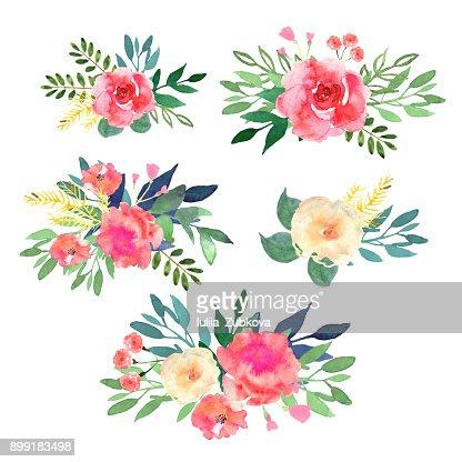 Ensemble floral. Collection de fleurs, Dessin Aquarelle. Conception : clipart vectoriel