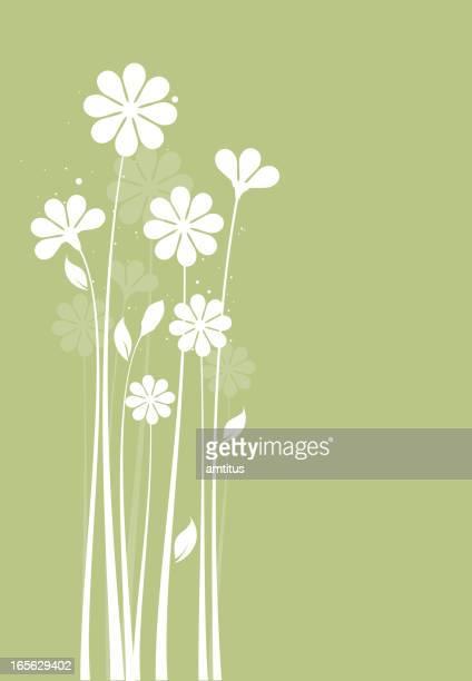 Blumen-silhouette
