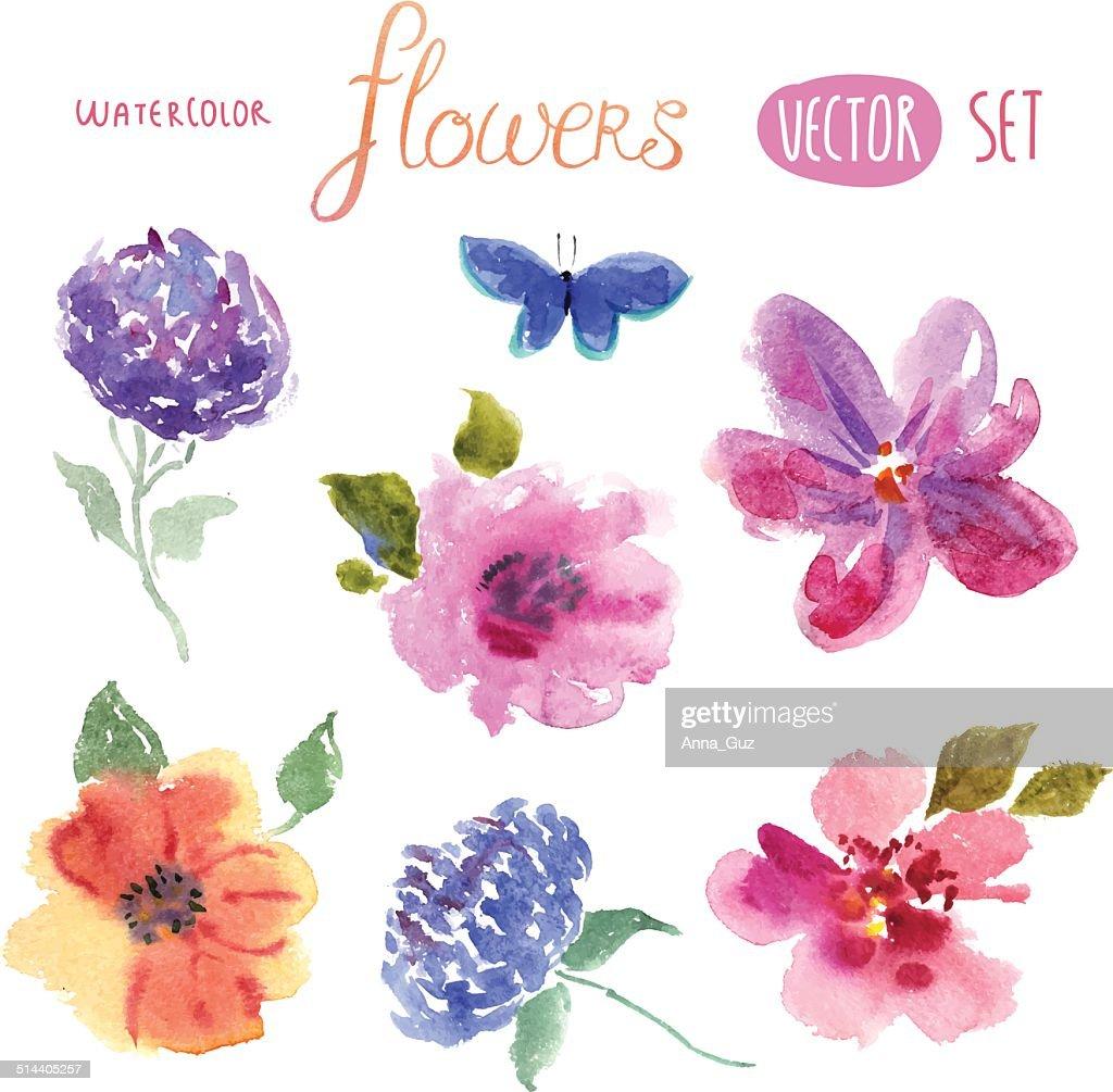 Floral watercolor set vector