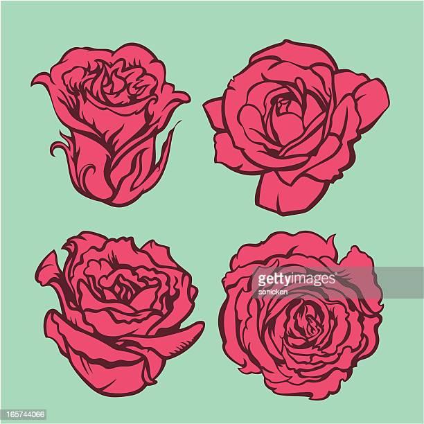 Blume-Kollektion